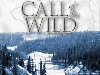 "jack london critical essay Jack london's novel, ""the call of the wild,"" has scored a great success  everywhere before its publication, london was not one of the big men a great  popular."