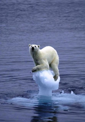 Global warming fact or fiction ???