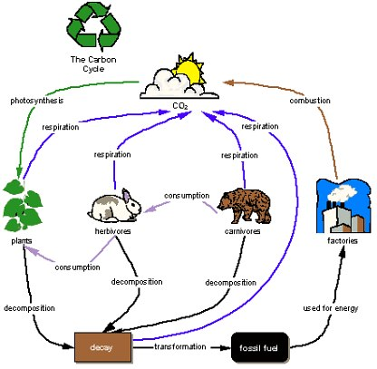 Global Warming Concept Map.Carbon Dioxide S Role In Global Warming Task