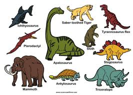 Image result for dinosaurs type
