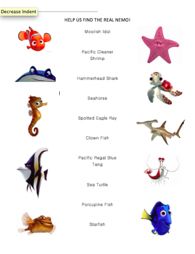 Under the sea process for Finding nemo fish names