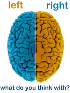 Brain conflict a human brain is divided into two distinct cerebral hemisphere connected by the corpus callo the sides resemble each other but the functions of each side ccuart Images