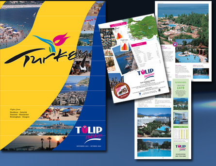in your group look at the travel brochures your teacher has provided you make a list of the things these travel brochures do to make you want to visit